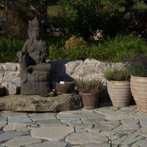 sochy a sošky